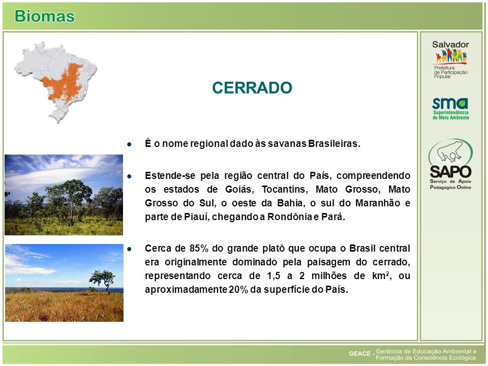 Cerrado CERRADO É o nome regional dado às savanas Brasileiras.