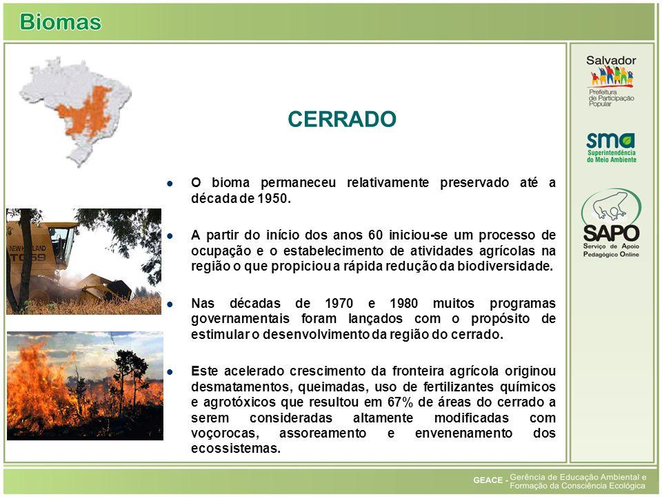 Cerrado CERRADO. O bioma permaneceu relativamente preservado até a década de 1950.
