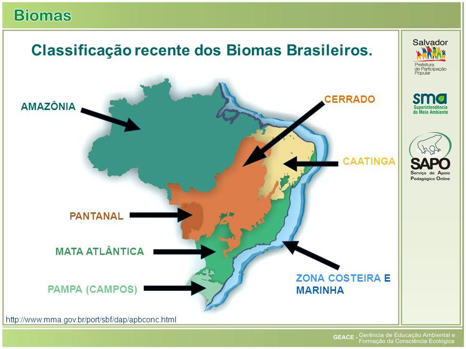 Classificação recente dos Biomas Brasileiros