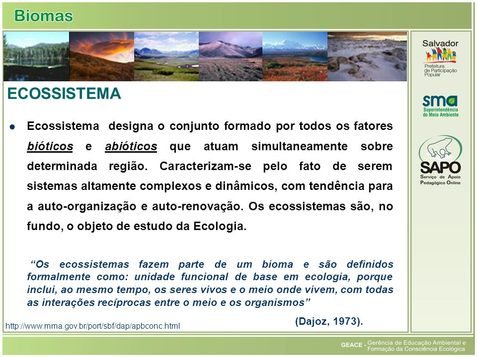 Ecossistema ECOSSISTEMA