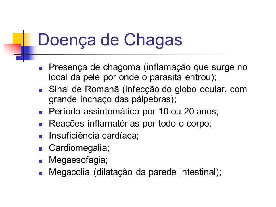 Doença de Chagas Presença de chagoma (inflamação que surge no local da pele por onde o parasita entrou);