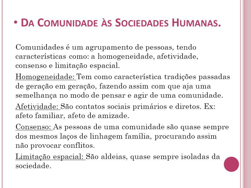 Da Comunidade às Sociedades Humanas.