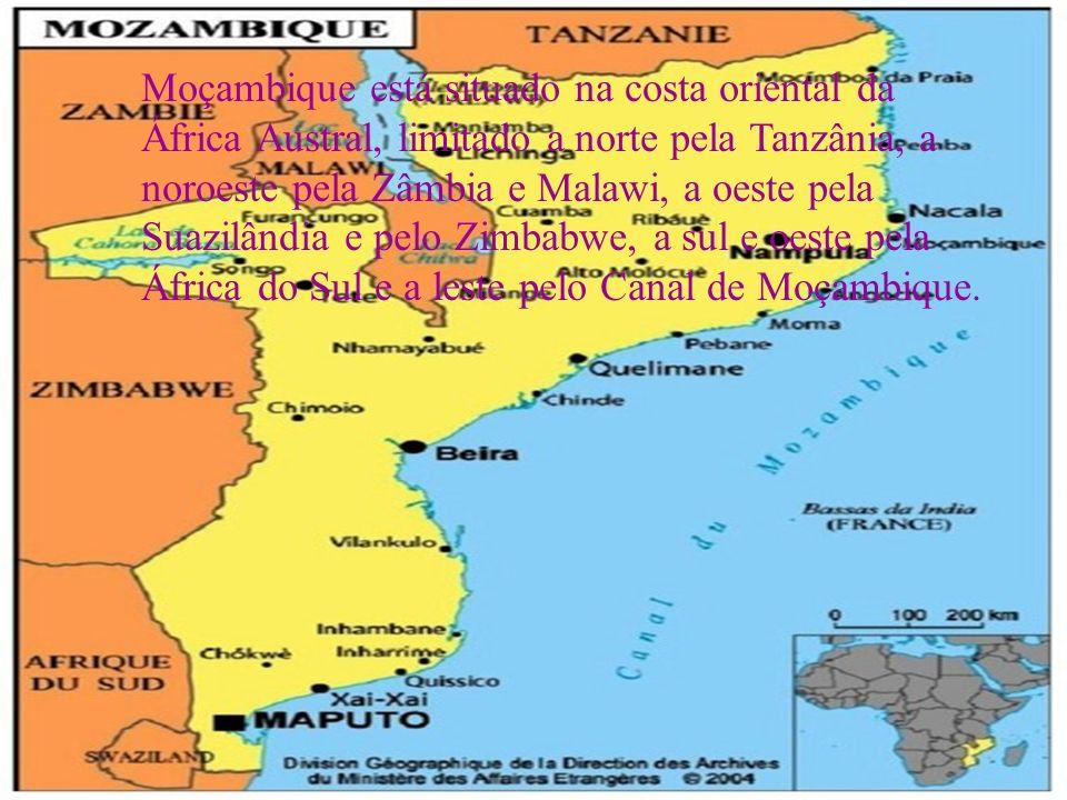 Moçambique está situado na costa oriental da África Austral, limitado a norte pela Tanzânia, a noroeste pela Zâmbia e Malawi, a oeste pela Suazilândia e pelo Zimbabwe, a sul e oeste pela África do Sul e a leste pelo Canal de Moçambique.