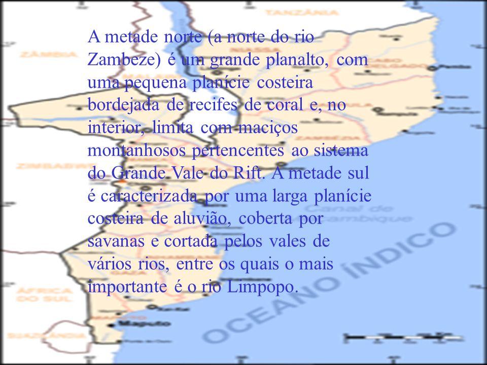 A metade norte (a norte do rio Zambeze) é um grande planalto, com uma pequena planície costeira bordejada de recifes de coral e, no interior, limita com maciços montanhosos pertencentes ao sistema do Grande Vale do Rift. A metade sul é caracterizada por uma larga planície costeira de aluvião, coberta por savanas e cortada pelos vales de vários rios, entre os quais o mais importante é o rio Limpopo.