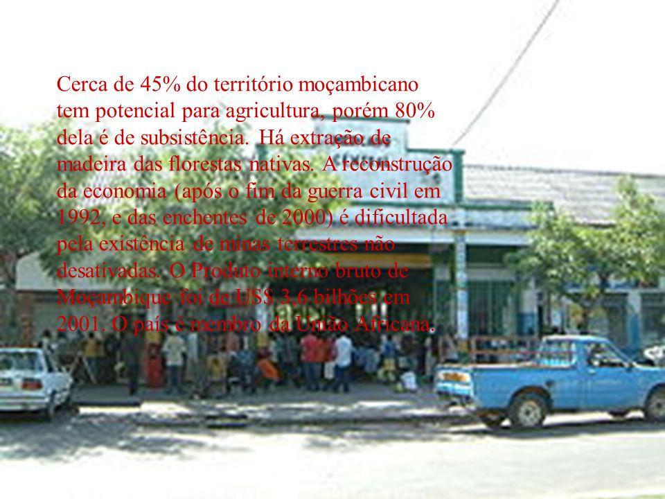 Cerca de 45% do território moçambicano tem potencial para agricultura, porém 80% dela é de subsistência. Há extração de madeira das florestas nativas. A reconstrução da economia (após o fim da guerra civil em 1992, e das enchentes de 2000) é dificultada pela existência de minas terrestres não desativadas. O Produto interno bruto de Moçambique foi de US$ 3,6 bilhões em 2001. O país é membro da União Africana.