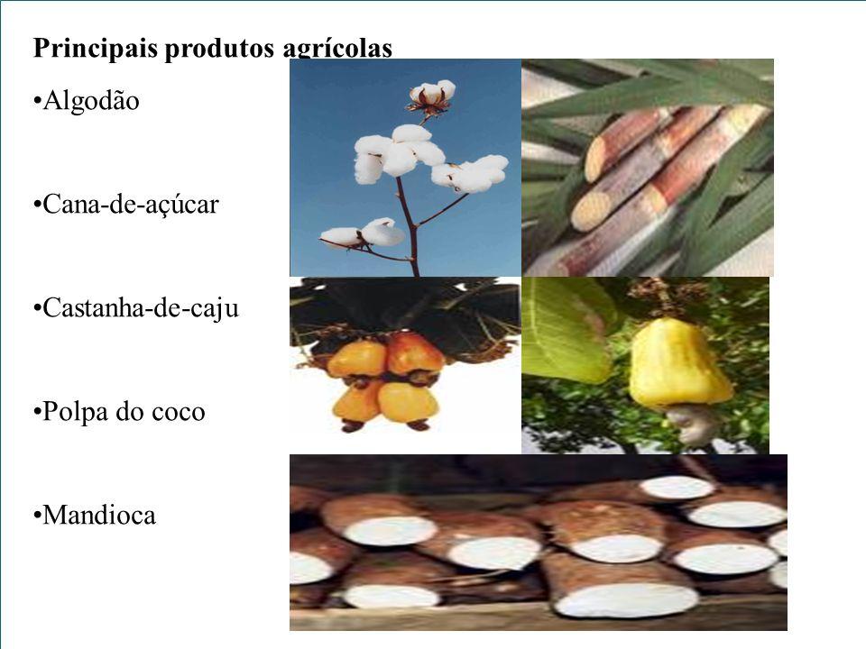 Principais produtos agrícolas