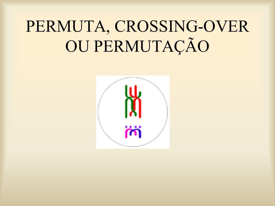 PERMUTA, CROSSING-OVER OU PERMUTAÇÃO