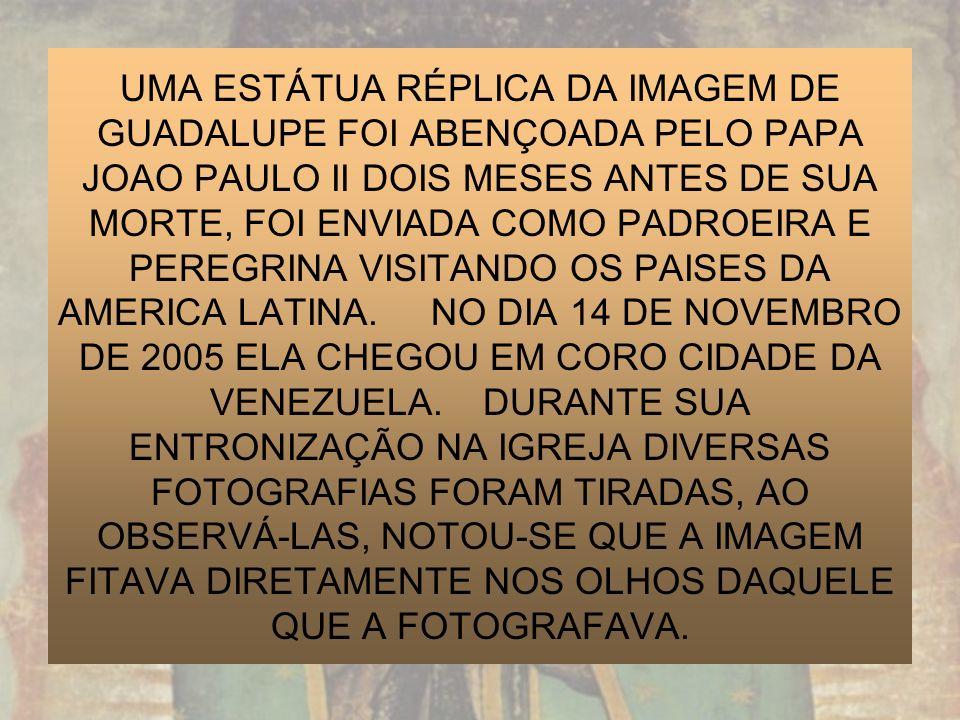 UMA ESTÁTUA RÉPLICA DA IMAGEM DE GUADALUPE FOI ABENÇOADA PELO PAPA JOAO PAULO II DOIS MESES ANTES DE SUA MORTE, FOI ENVIADA COMO PADROEIRA E PEREGRINA VISITANDO OS PAISES DA AMERICA LATINA.
