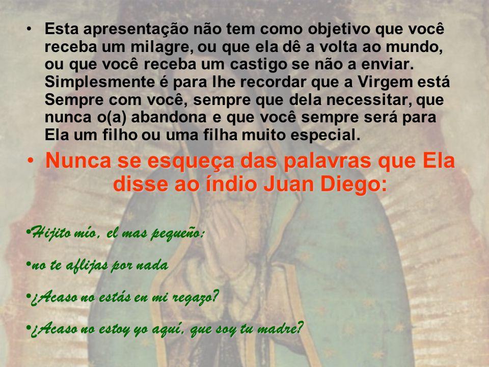 Nunca se esqueça das palavras que Ela disse ao índio Juan Diego: