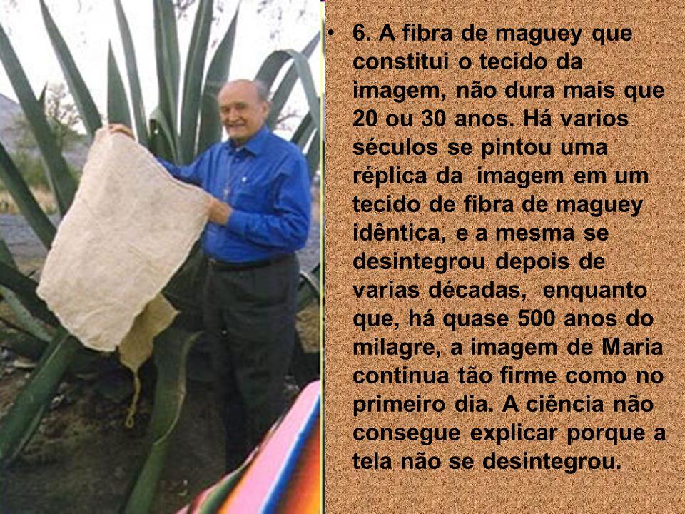 6. A fibra de maguey que constitui o tecido da imagem, não dura mais que 20 ou 30 anos.