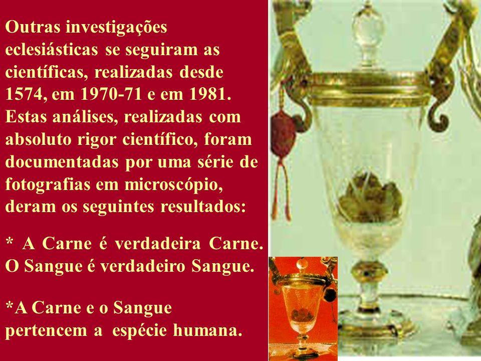 Outras investigações eclesiásticas se seguiram as científicas, realizadas desde 1574, em 1970-71 e em 1981. Estas análises, realizadas com absoluto rigor científico, foram documentadas por uma série de fotografias em microscópio, deram os seguintes resultados: