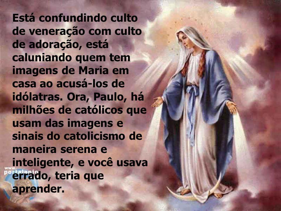 Está confundindo culto de veneração com culto de adoração, está caluniando quem tem imagens de Maria em casa ao acusá-los de idólatras.