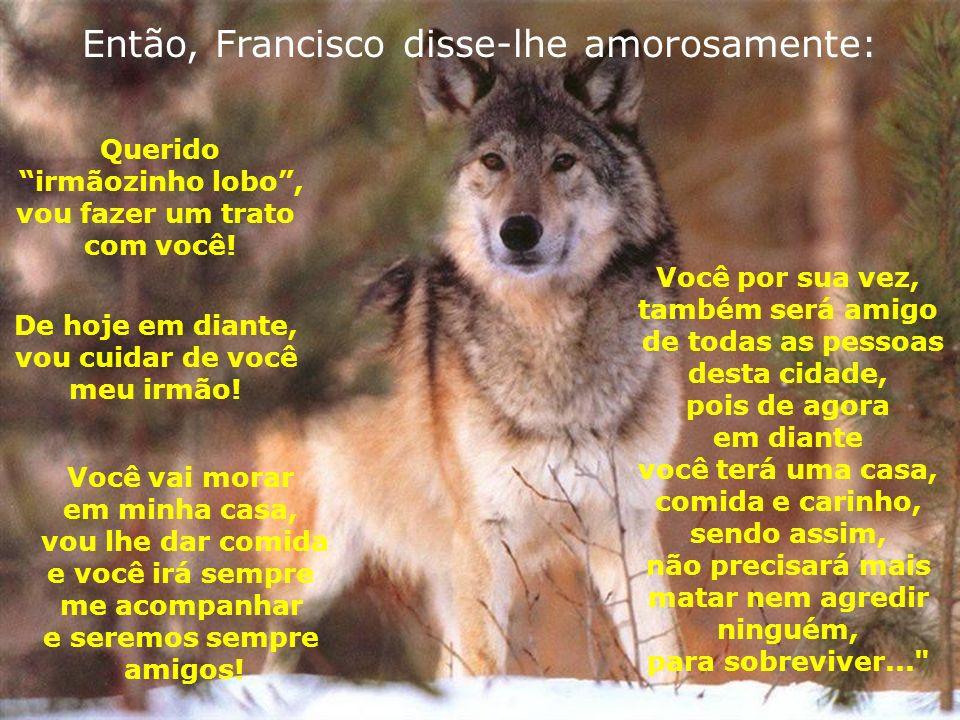 Então, Francisco disse-lhe amorosamente: