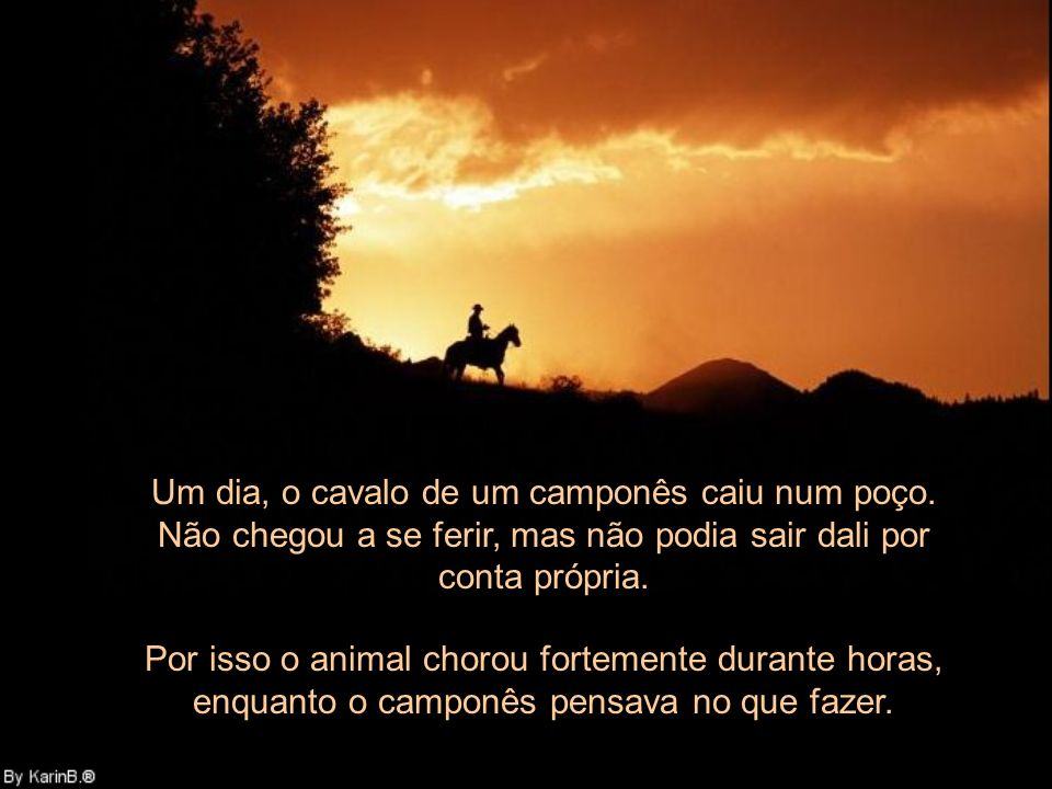 Um dia, o cavalo de um camponês caiu num poço