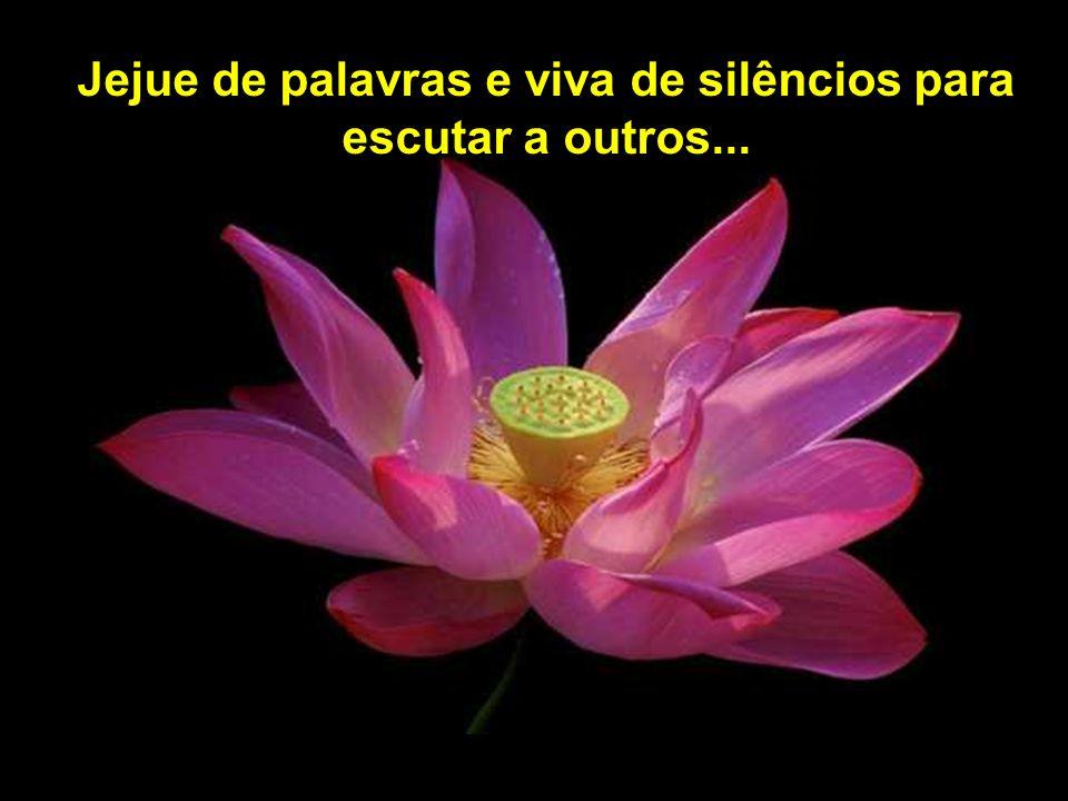 Jejue de palavras e viva de silêncios para escutar a outros...