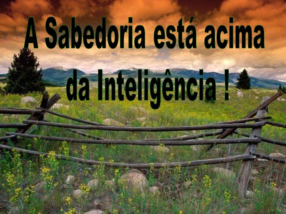 A Sabedoria está acima da Inteligência !
