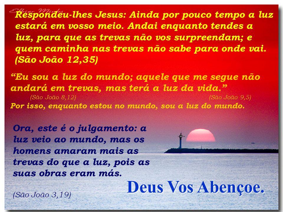 Respondeu-lhes Jesus: Ainda por pouco tempo a luz estará em vosso meio