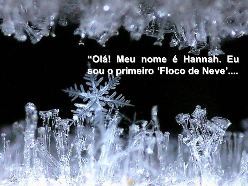 Olá! Meu nome é Hannah. Eu sou o primeiro 'Floco de Neve'....