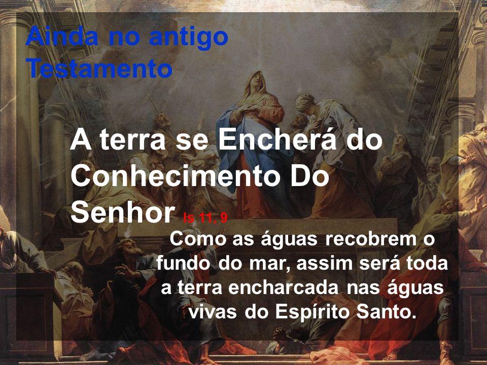 A terra se Encherá do Conhecimento Do Senhor Is 11, 9