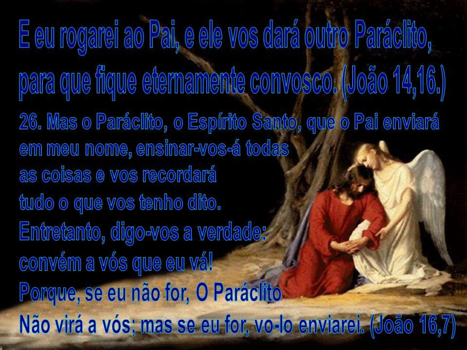 E eu rogarei ao Pai, e ele vos dará outro Paráclito,