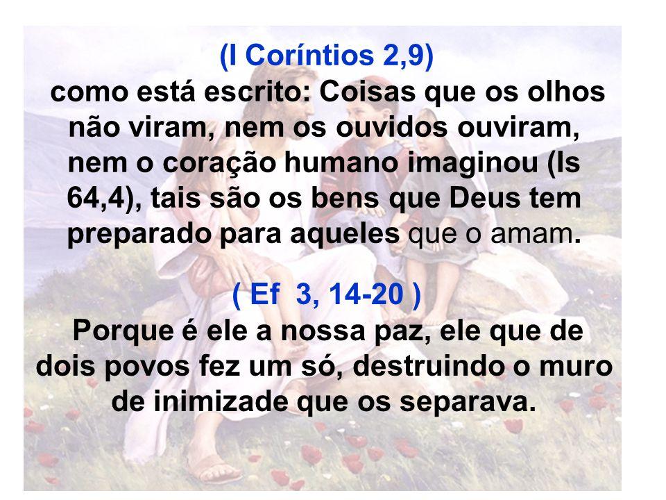 (I Coríntios 2,9)