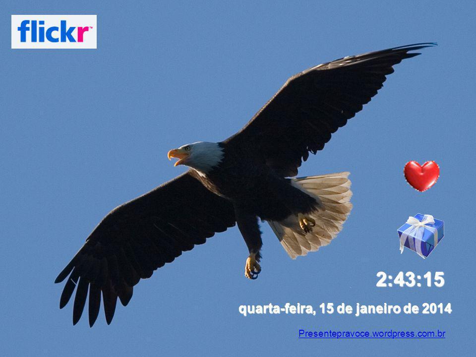 4:18:03 sábado, 25 de março de 2017 Presentepravoce.wordpress.com.br
