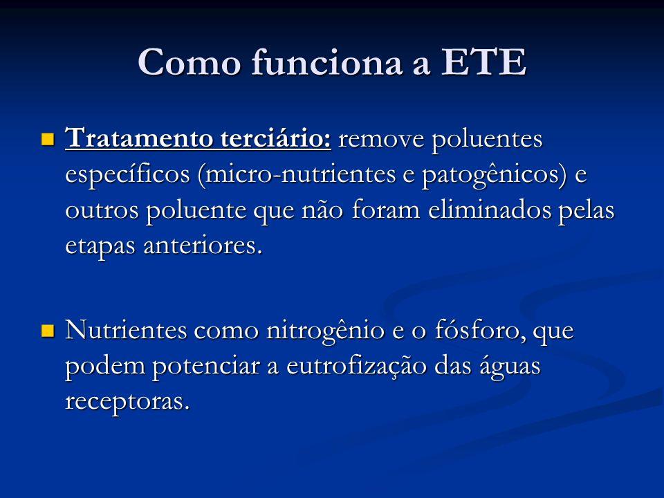Como funciona a ETE