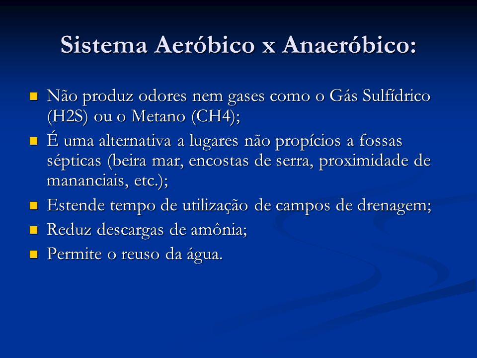 Sistema Aeróbico x Anaeróbico: