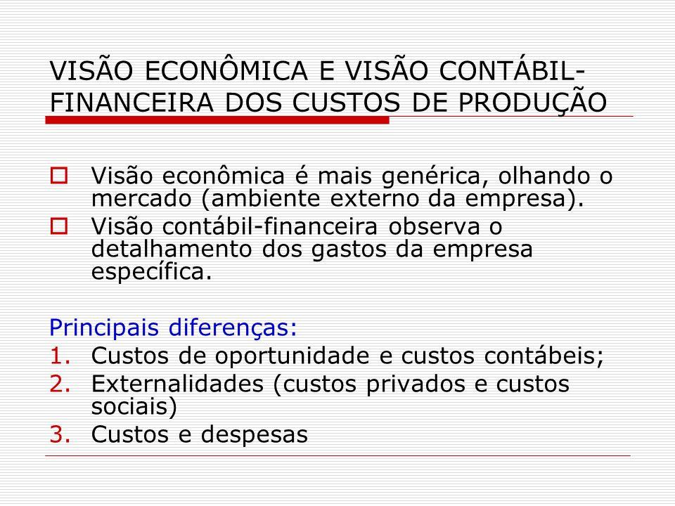 VISÃO ECONÔMICA E VISÃO CONTÁBIL-FINANCEIRA DOS CUSTOS DE PRODUÇÃO