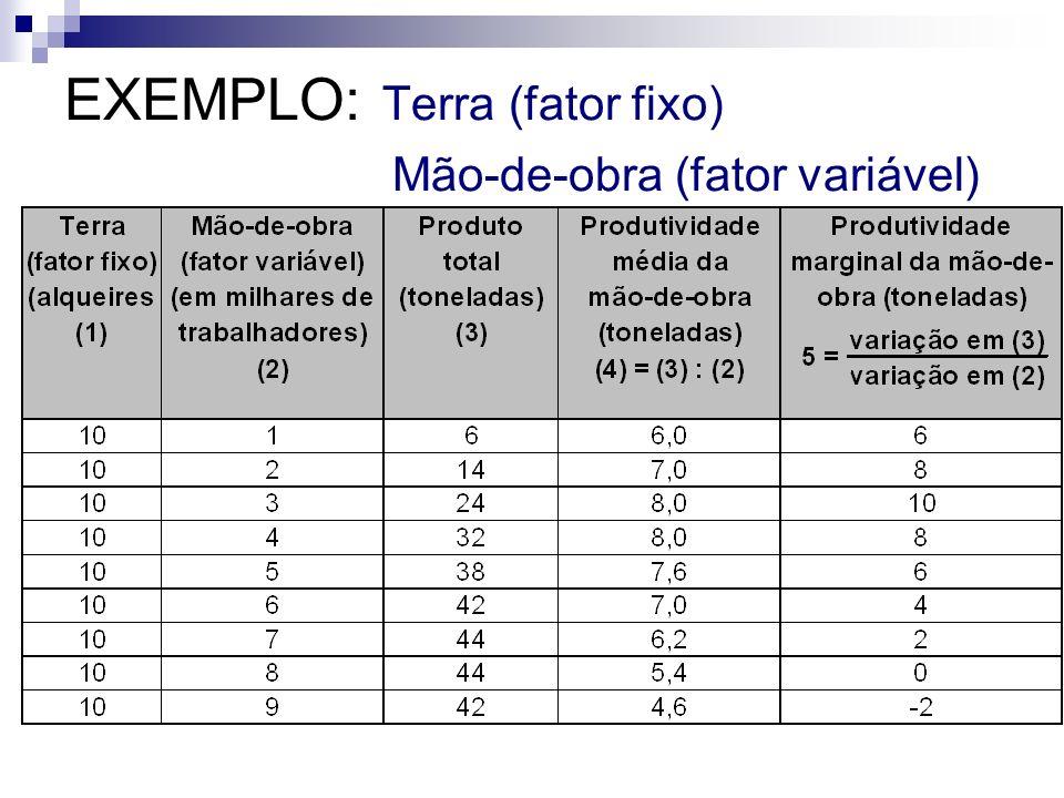 EXEMPLO: Terra (fator fixo) Mão-de-obra (fator variável)