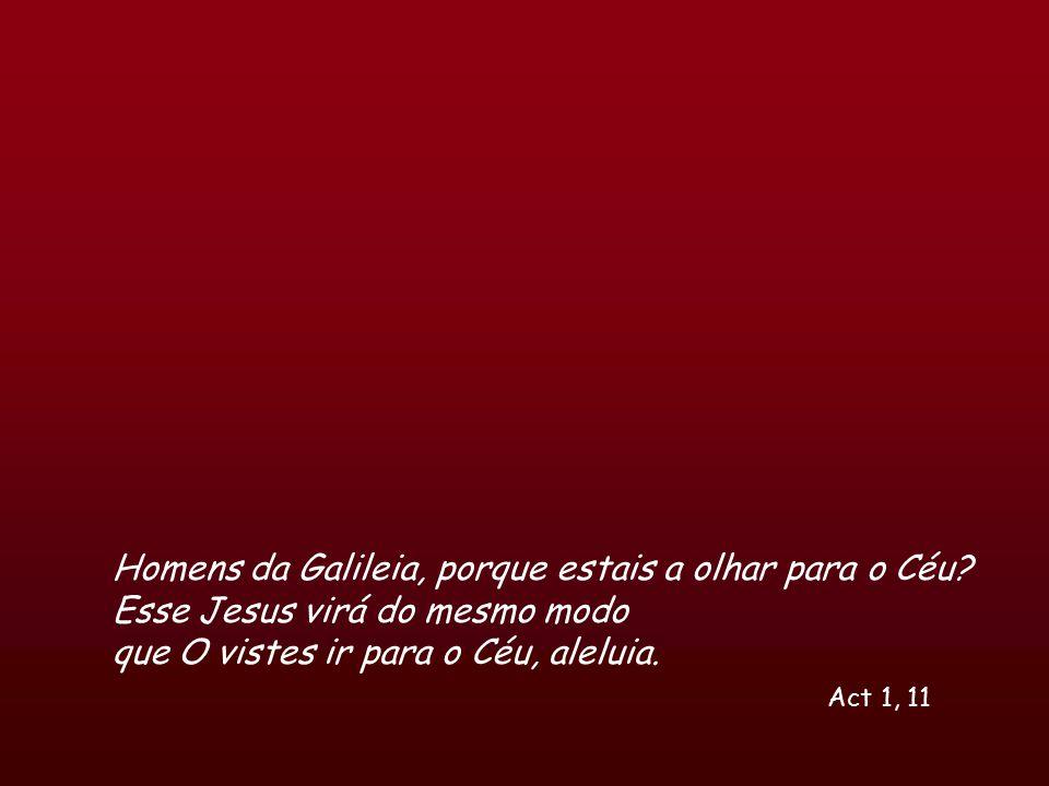 Homens da Galileia, porque estais a olhar para o Céu