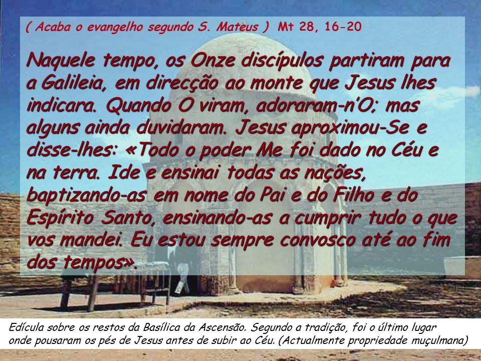 ( Acaba o evangelho segundo S. Mateus ) Mt 28, 16-20