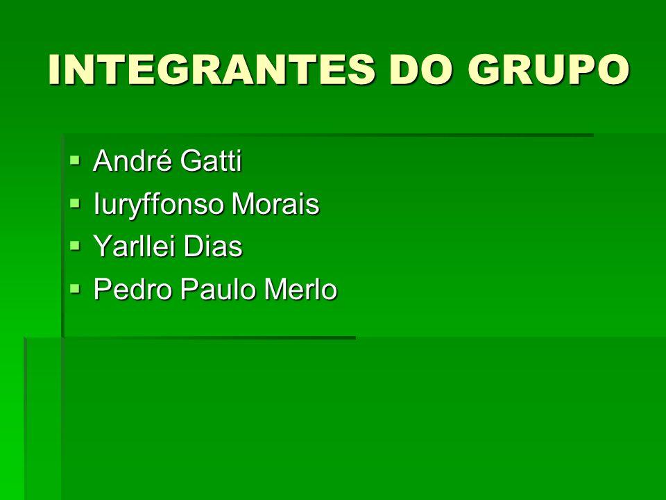 INTEGRANTES DO GRUPO André Gatti Iuryffonso Morais Yarllei Dias