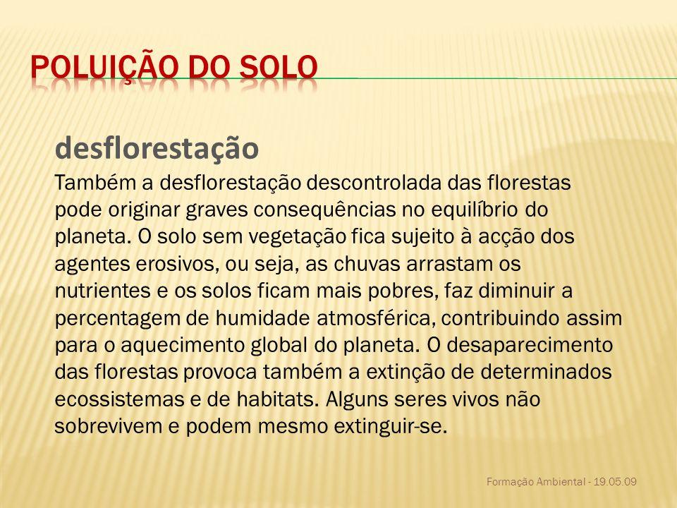 Poluição do solo desflorestação