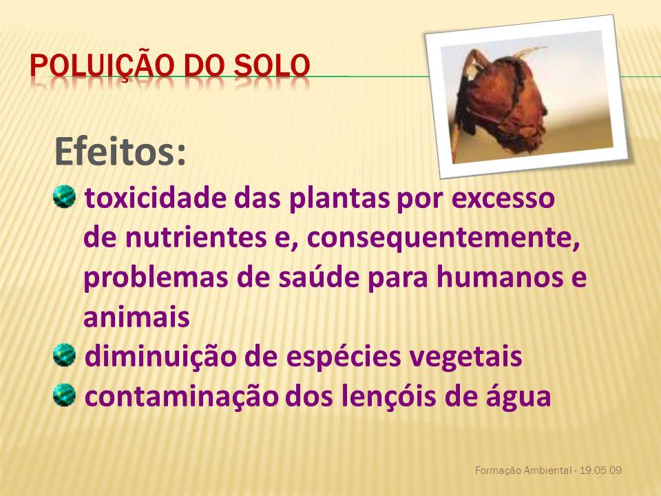 Efeitos: Poluição do solo toxicidade das plantas por excesso