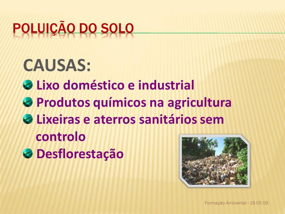 CAUSAS: Poluição do solo Lixo doméstico e industrial