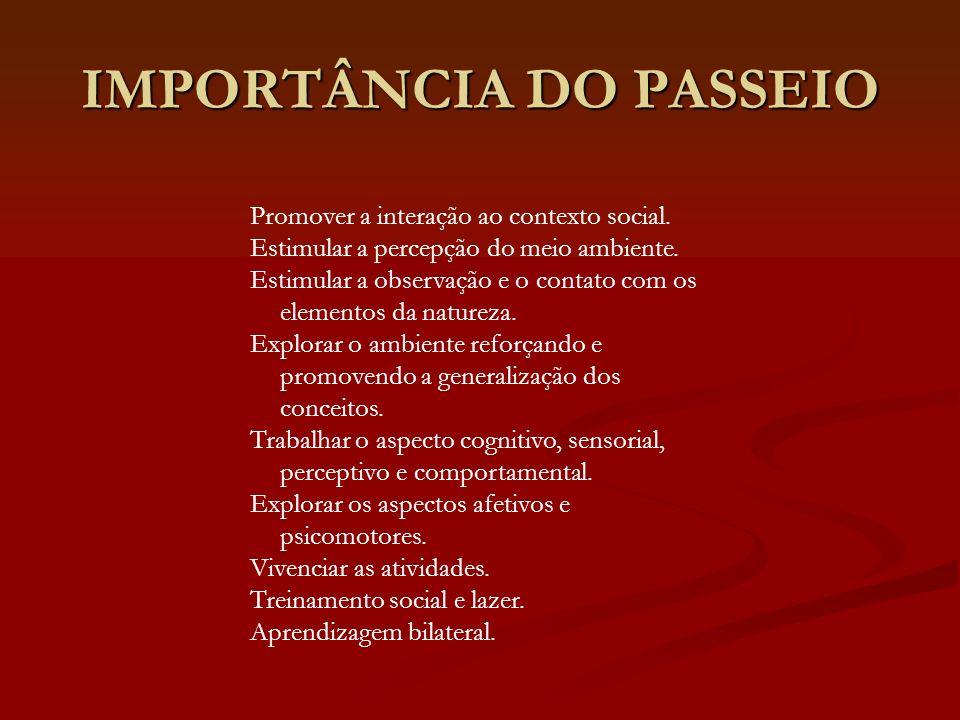 IMPORTÂNCIA DO PASSEIO