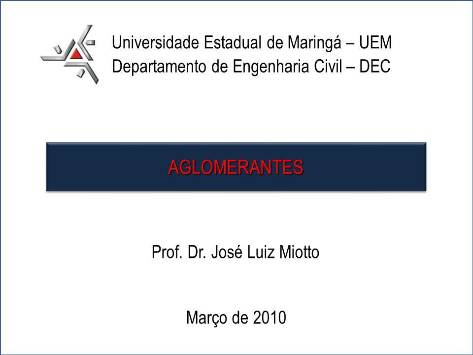 Prof. Dr. José Luiz Miotto