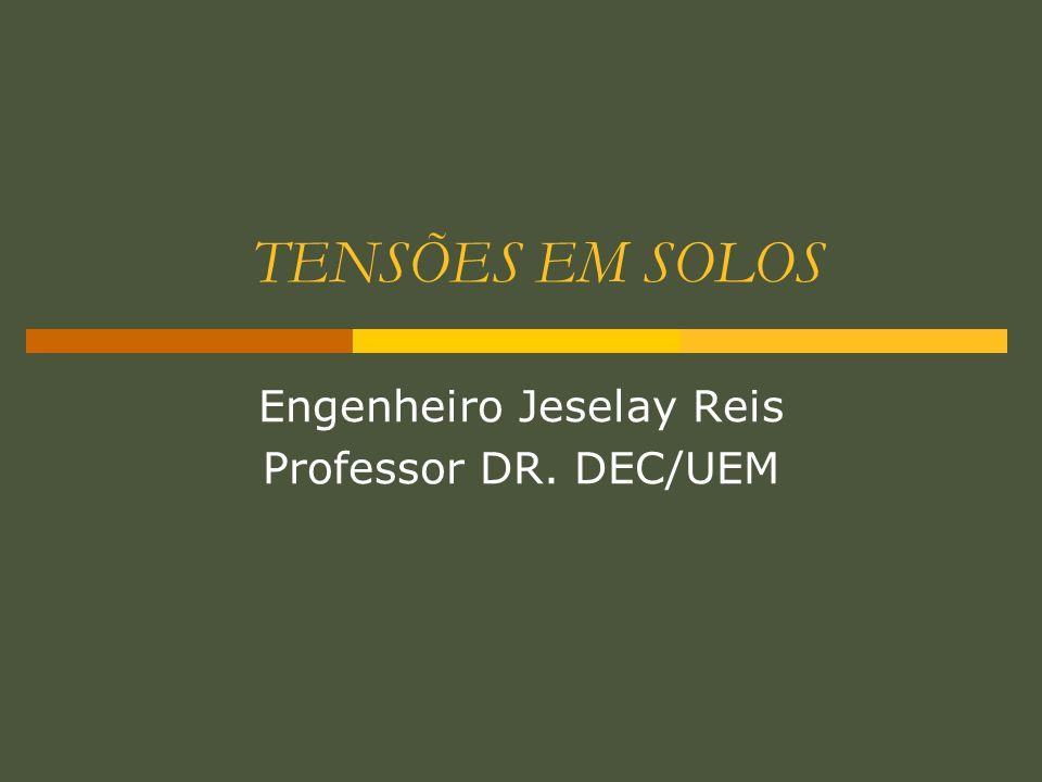 Engenheiro Jeselay Reis Professor DR. DEC/UEM