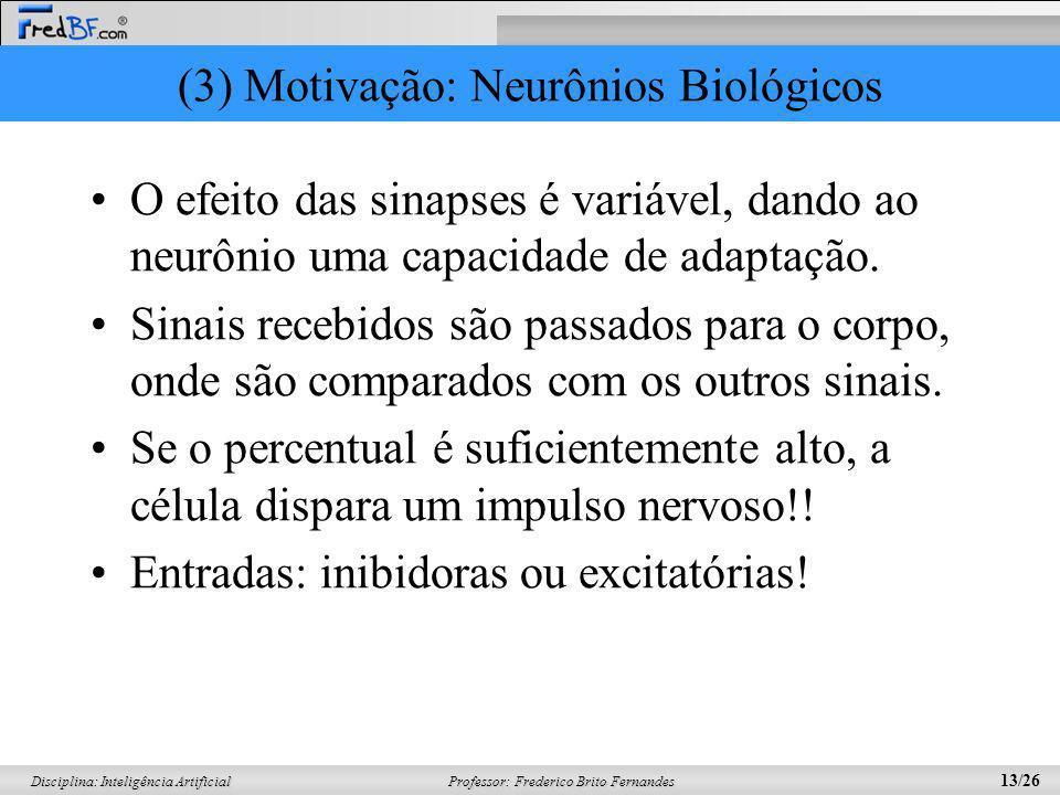 (3) Motivação: Neurônios Biológicos