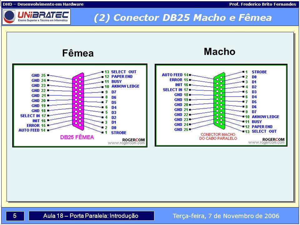 (2) Conector DB25 Macho e Fêmea