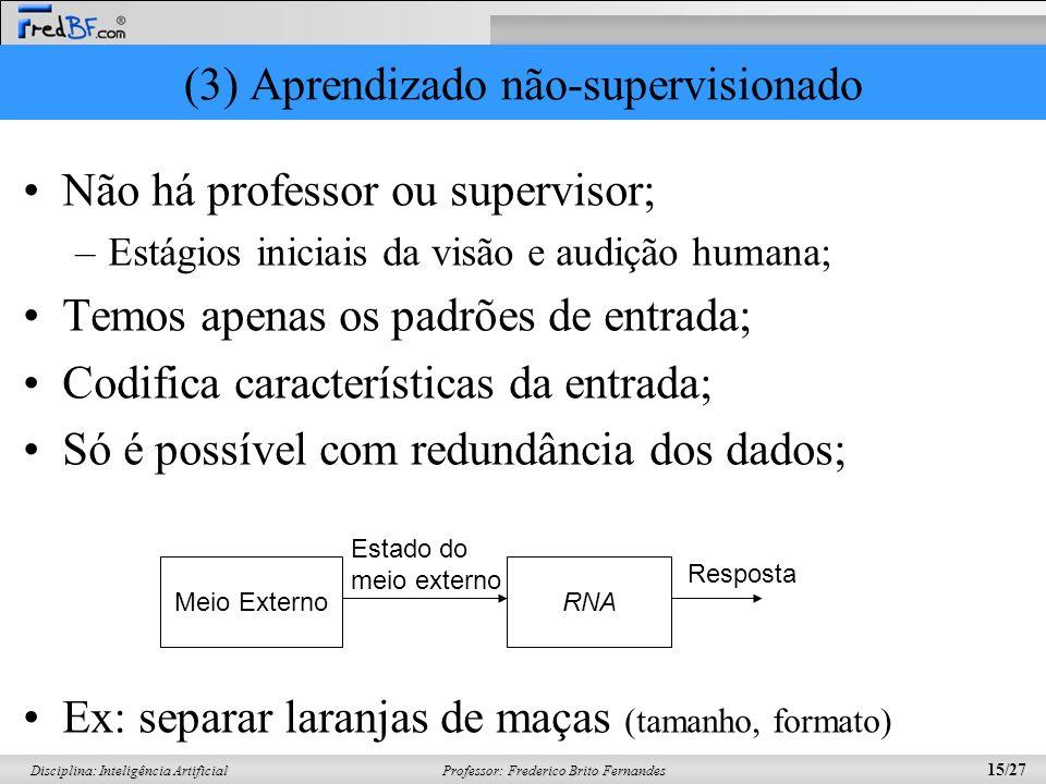 (3) Aprendizado não-supervisionado