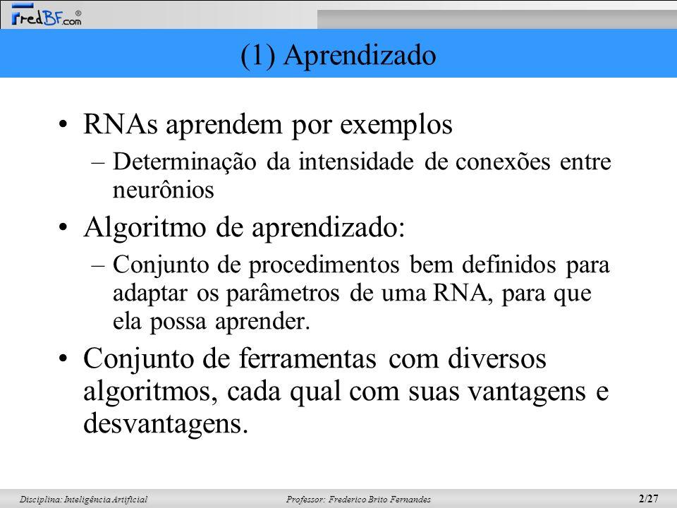 RNAs aprendem por exemplos