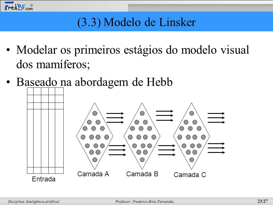 Modelar os primeiros estágios do modelo visual dos mamíferos;