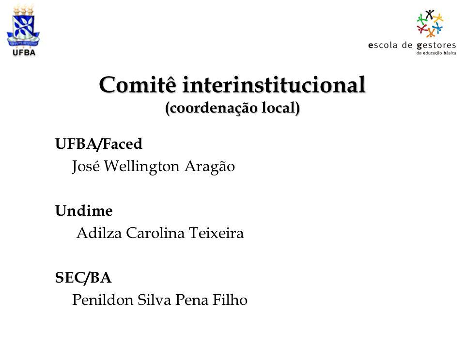 Comitê interinstitucional (coordenação local)