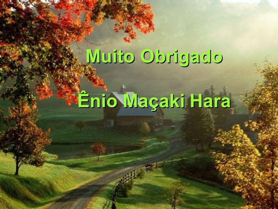 Muito Obrigado Ênio Maçaki Hara