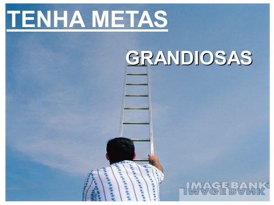 TENHA METAS GRANDIOSAS