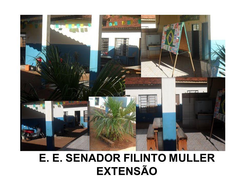 E. E. SENADOR FILINTO MULLER EXTENSÃO