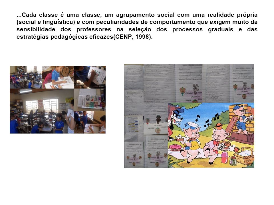 ...Cada classe é uma classe, um agrupamento social com uma realidade própria (social e lingüística) e com peculiaridades de comportamento que exigem muito da sensibilidade dos professores na seleção dos processos graduais e das estratégias pedagógicas eficazes(CENP, 1998).