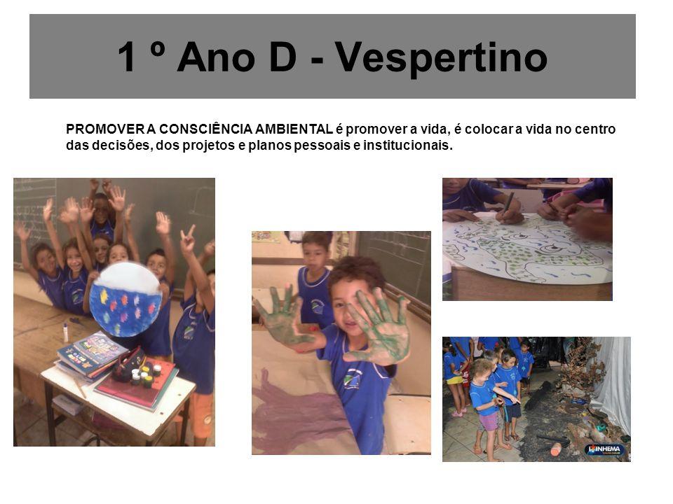 1 º Ano D - Vespertino